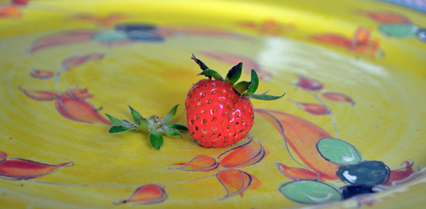 Grow your own strawberries – all gone!