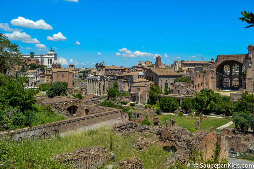 View from the Roman Forum