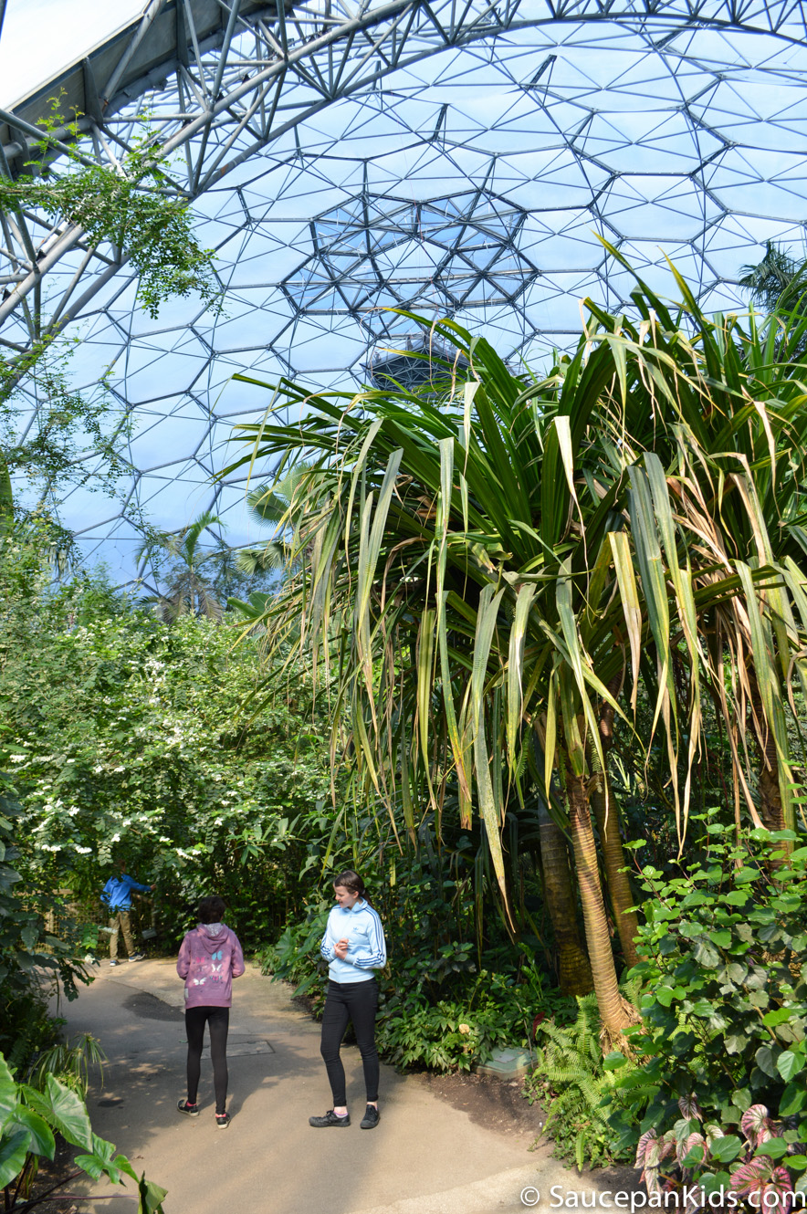 Saucepan Kids review Eden Project Cornwall - The Rainforest Biome the heat