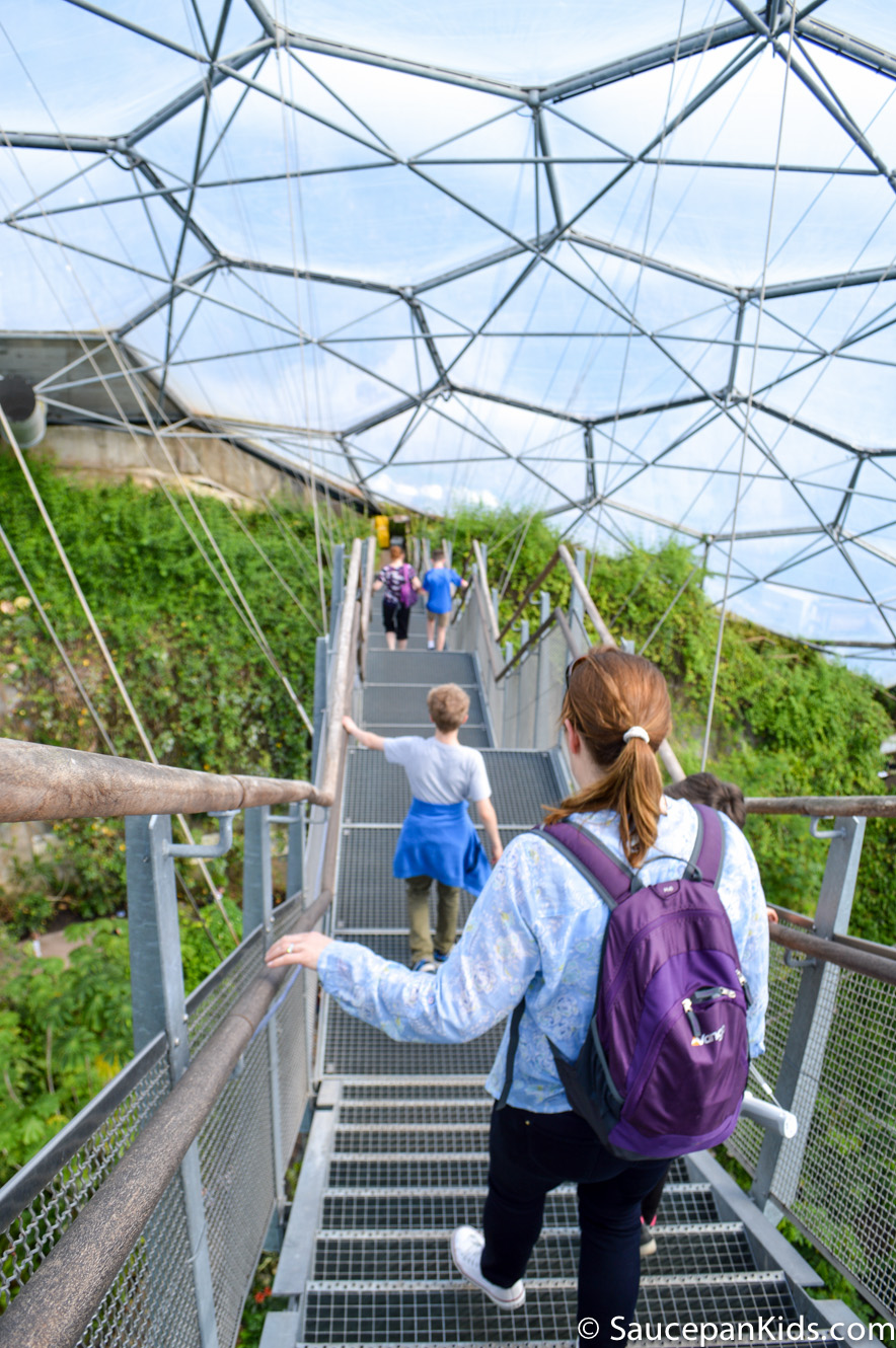 Saucepan Kids visit and review Eden Project Cornwall - The canopy walk