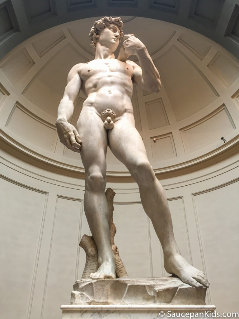 Michelangelo's David - city wonders tour florence