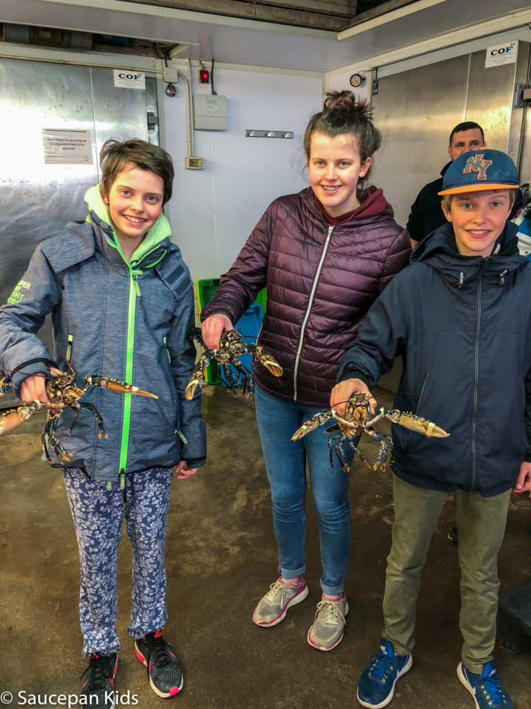 thing-to-Family Friendly things to do in Costa Brava with Saucepan Kids - Catalonia - Spain - A family visit to the fish auction in Roses - holding live lobsters before they are sent off to their buyer